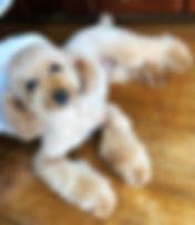 Daisy the Mascot at Numata Medical Clinic