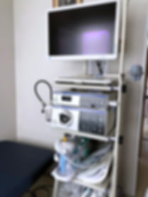 Endoscopy_Numata medical Clinic.jpg
