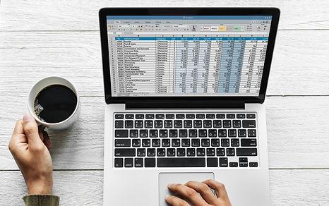 MS Excel.jpg