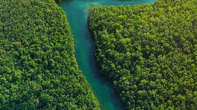 Rock In Rio lança novo projeto ambiental e anuncia a primeira atração dia 27 de agosto