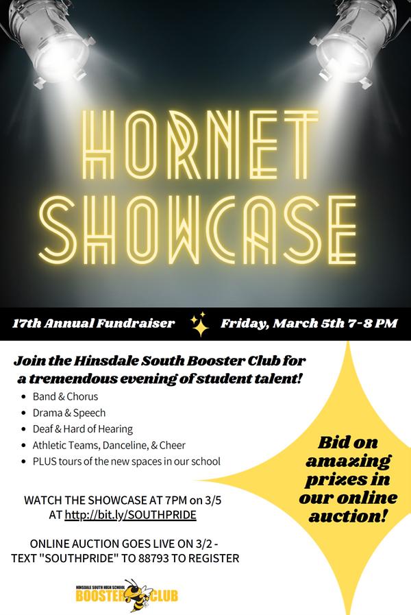 HornetShowcase2.png