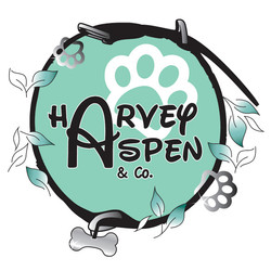 Harvey Aspen and Co.