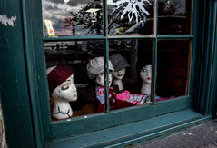 windowskull- Savannah.jpg