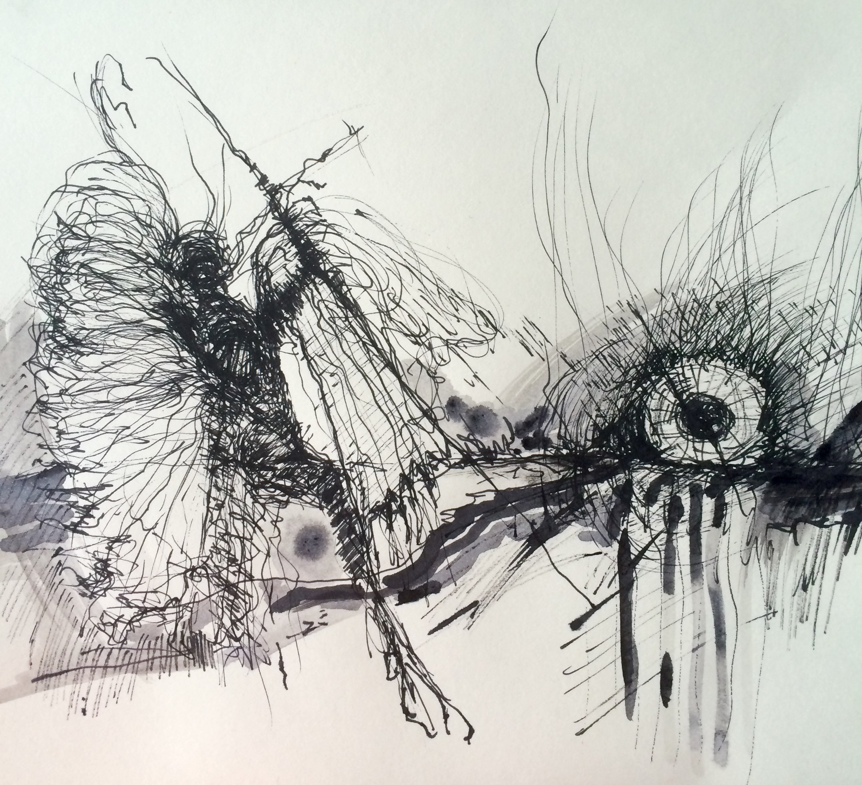 The Moth I