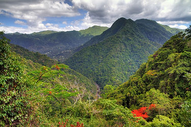 Beautiful view of Puerto Rico mountains