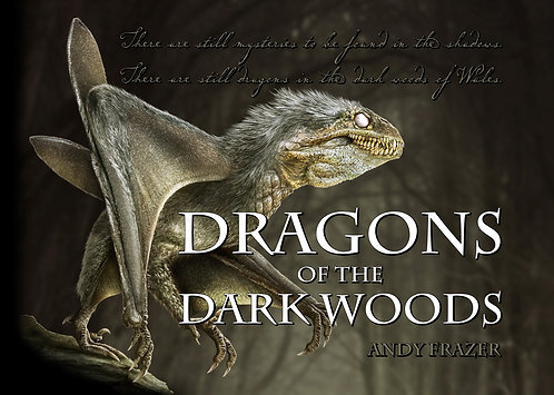 Dragons of the Dark Woods by Andy Frazer