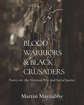 2Corrected Cover Blood Warriors_edited.jpg