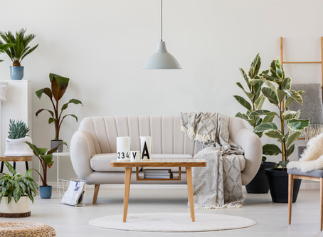 Featured in HuffPost: Why Millennials Are Suddenly So Obsessed With Houseplants