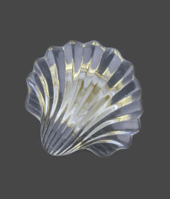 Brass Base Clear Glass Seashell Knob