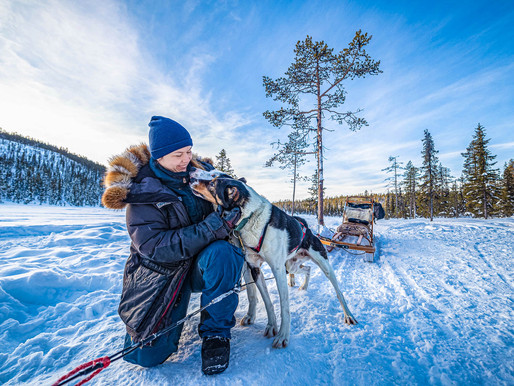 How I Keep My Fingers Warm - Tips From an Arctic Sled Dog Musher