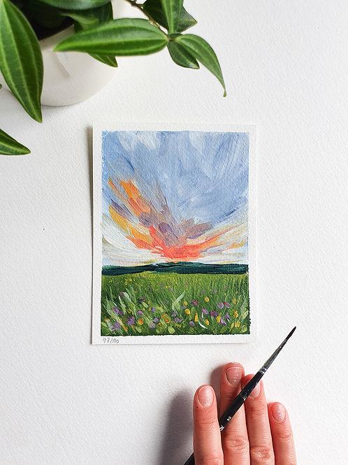 "Day 097: ""Backyard Beauty"" acrylic painting 12x16cm / 5x6"""