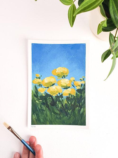 """Day 013: """"Globeflower Fields"""" acrylic painting 12x17cm / 5x7"""""""