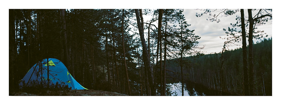 Forest Pano (with Border).jpg