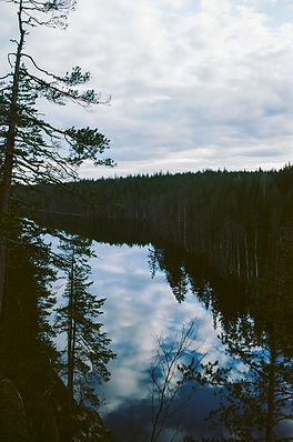 Finland Apr '18 (Ektar100)-22.jpg
