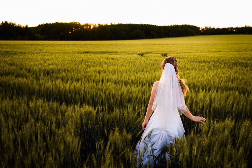Nevěsta jde obilným polem při západu slunce.