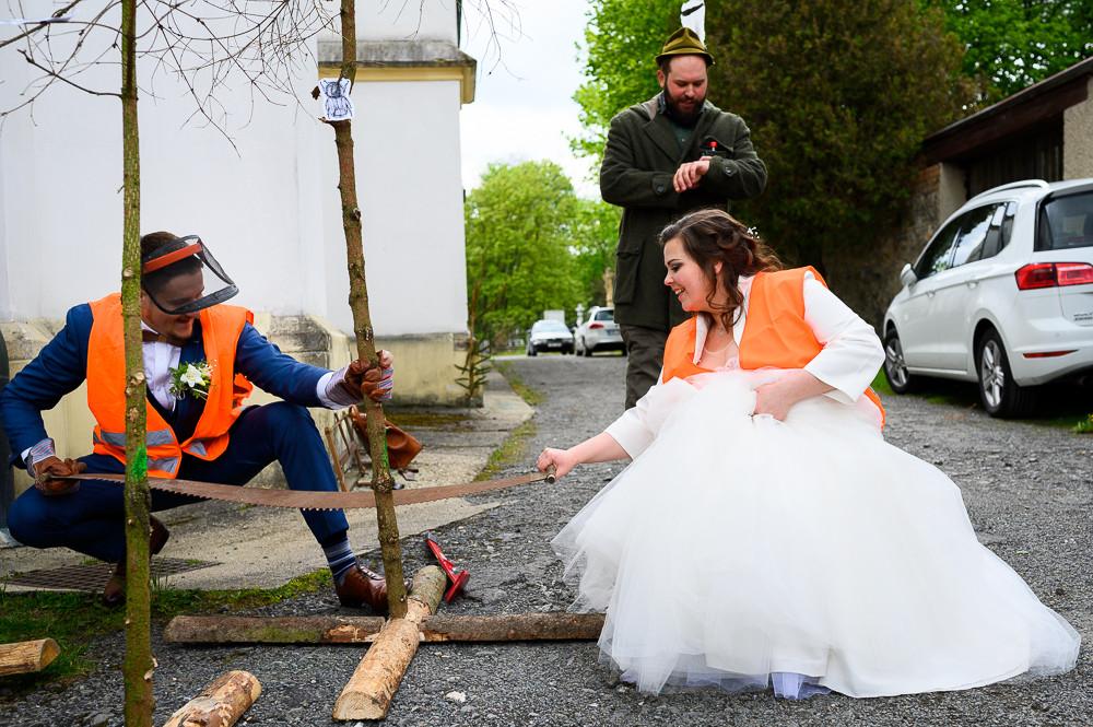 Novomanželé kácí strom v rámci zalikování před kostelem, Kladky.
