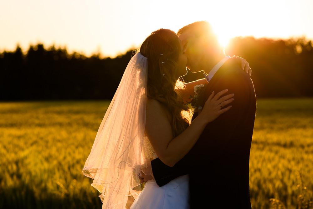 Svatební políbení v obilném poli při západu slunce.