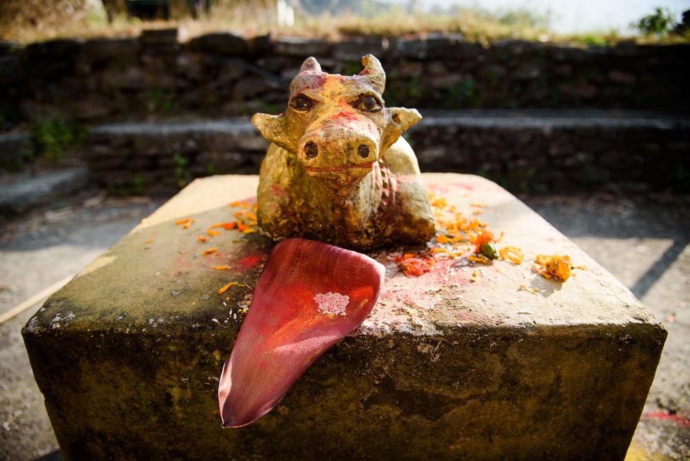 Soška krávy kdesi v nepálské vesnici u Pokhary.