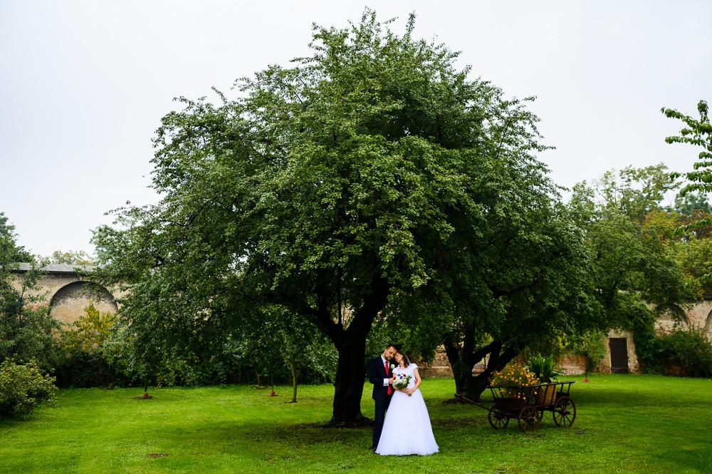 Novomanželé pózují pod stromem v zahradě v klášteře kapucínů v Olomouci.