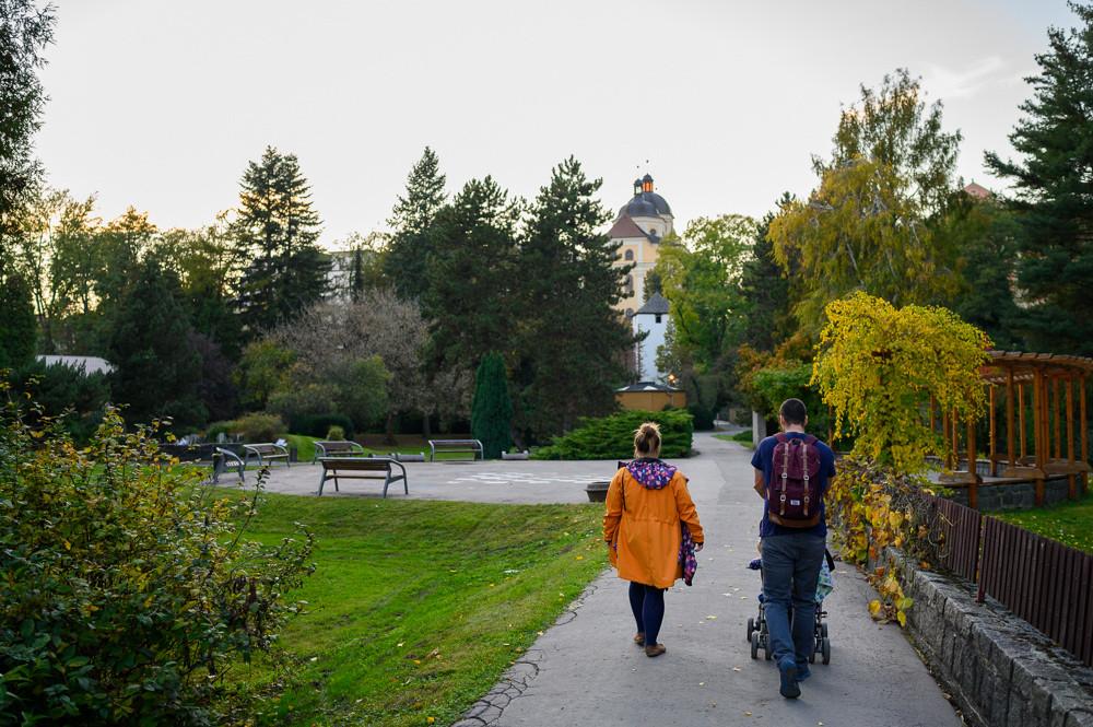 Botanická zahrada, rozárium, Olomouc.
