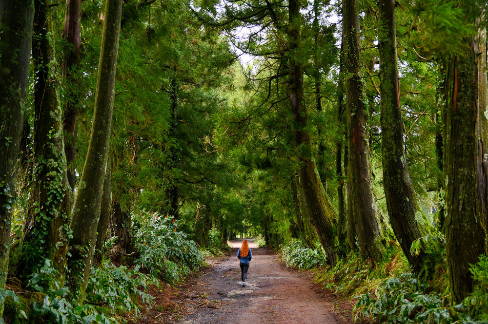 Walking path towards Lake Congro, Azores.