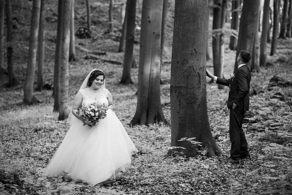 Černobílý portrét novomanželů při procházce lesem, Průchodnice.