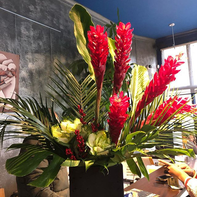 Tropical Christmas with torch ginger