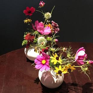 Bud vases of wild flowers