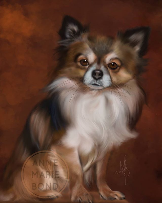 PET PORTRAIT ARTIST Commissions for your