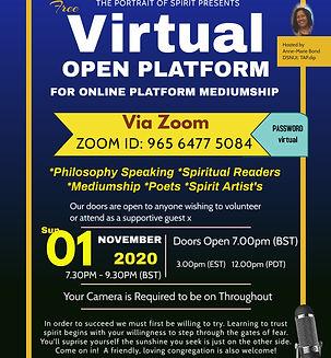 Virtual Open Platform.jpg