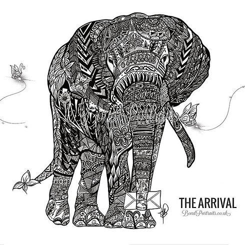Introducing_The Elephant ____ Hand-drawn