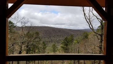 Whiskey Hollow View