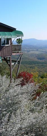 Area Views