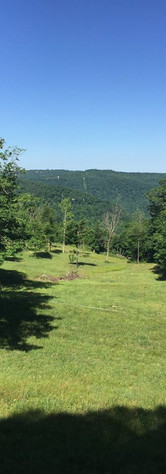 Deer Cabin view