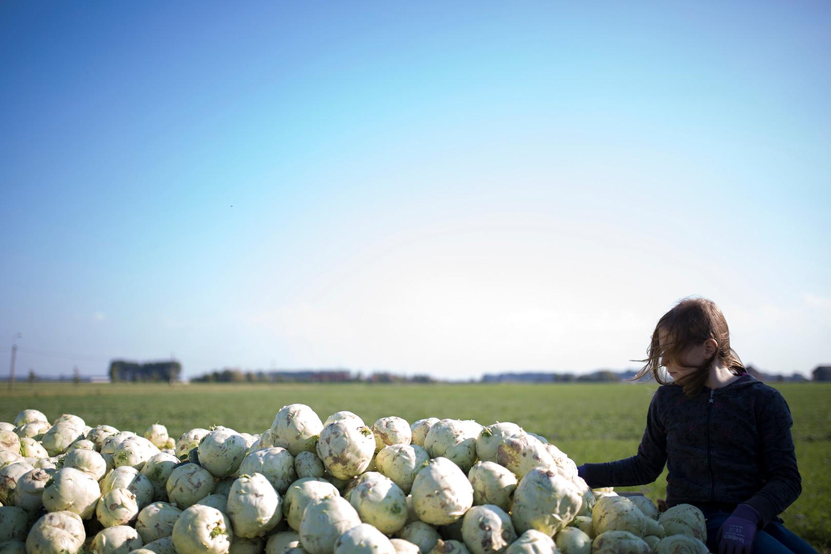 07-Gleaning.jpg