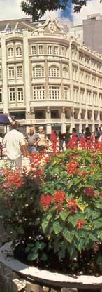 rua-das-flores1.jpg