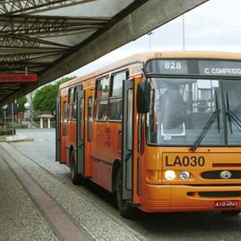 feeder-bus-1.jpg
