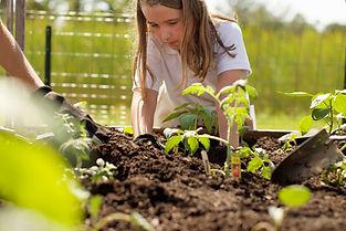 elementary-garden-3-naples-fl.jpg