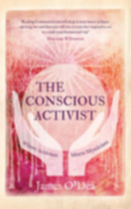 The Conscious Activist.jpg