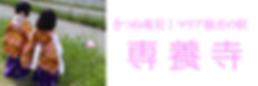 きつね稚児行列。稚児募集。専養寺です。マリア観音を祀る珍しい寺院。日本一のワンダーランド本堂。