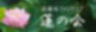 蓮の会バナー.png