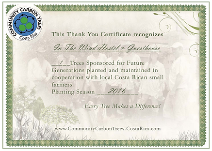 Tree Sponsor Certificate
