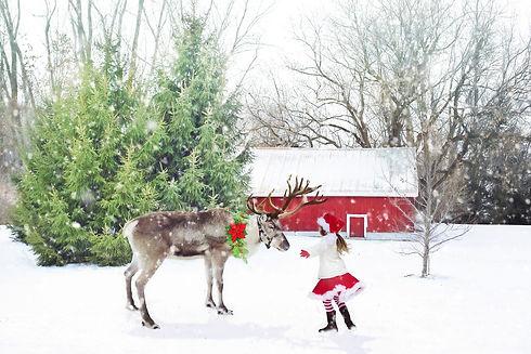 christmas-scene-1846486_1920.jpg