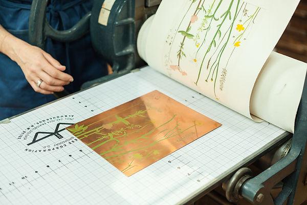 Printing Meadow Sweet.jpg