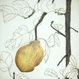 Quince with Gold Leaf