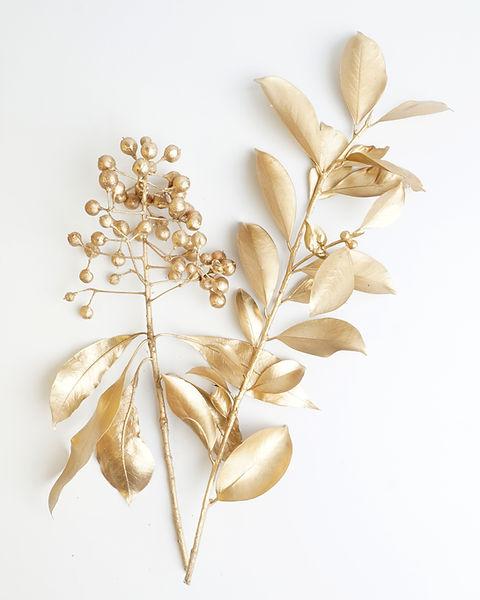 A image of a golden leaf and fruit design elements. D