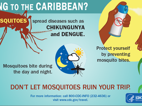 Stay Calm and Informed About Zika!... and all other mosquito borne illnesses.