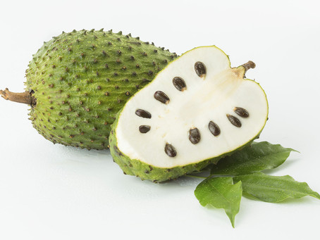 Meet Soursop! Caribbean Superfruit!!!