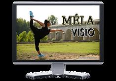 MELA VISIO.png