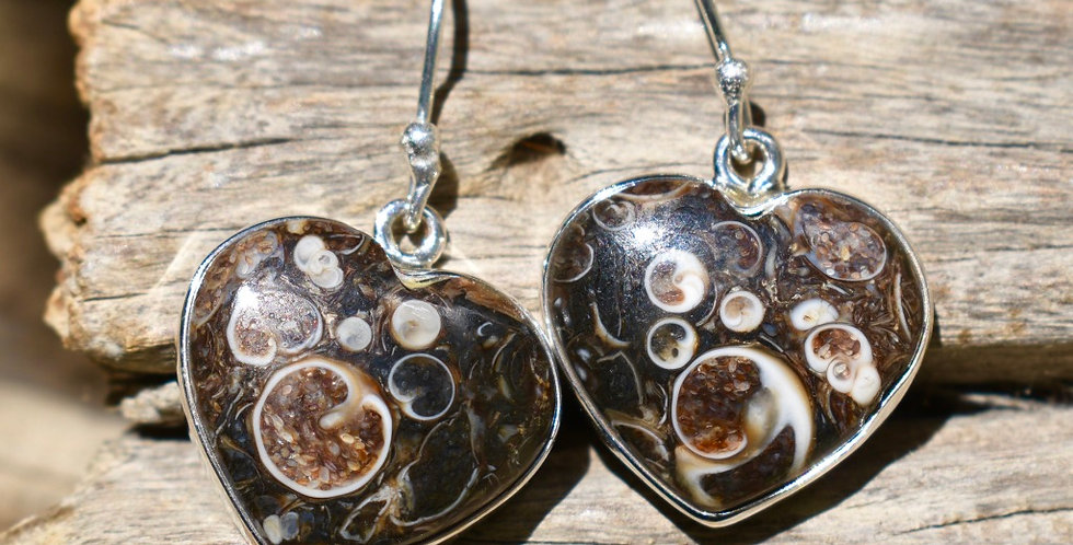 Turtella Jasper 925 Sterling Silver Earrings Jewelry